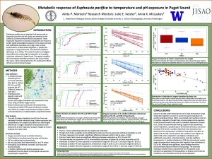 Anita's research poster