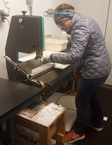 Laura cutting an ice core