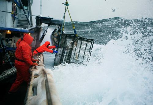 Crab fishing in the Bering Sea