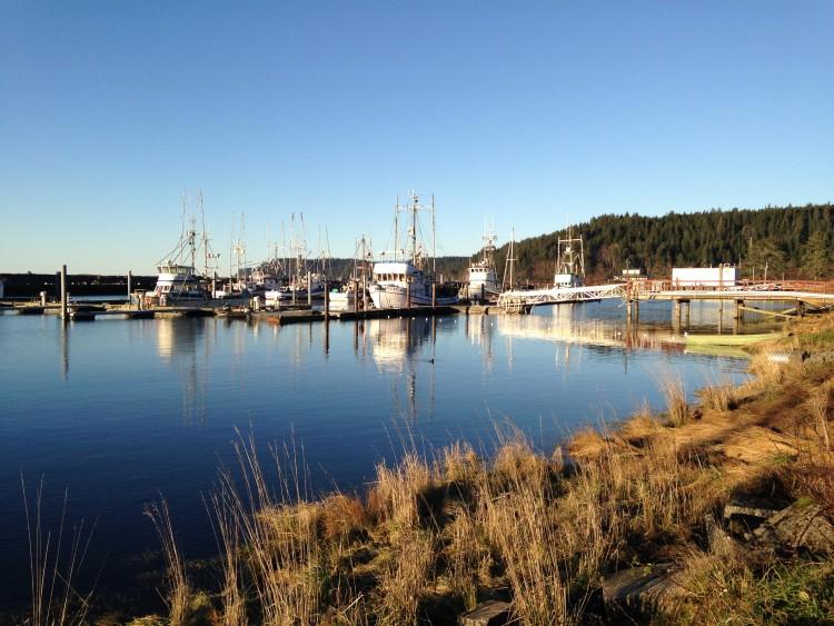 Fishing boats in Quileute Harbor Marina