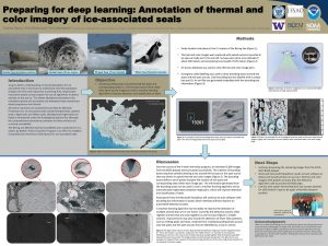Telaina's research poster