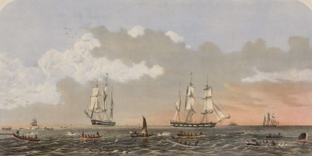 Painting of Sperm whaling activities