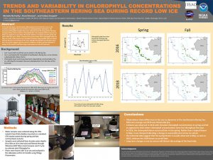 Michelle's research poster