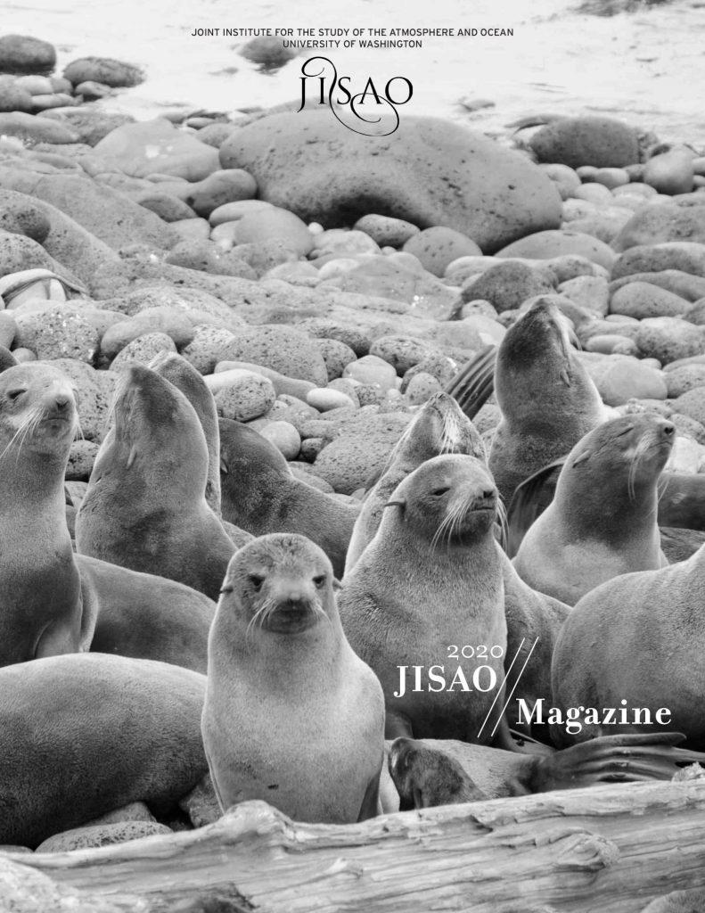 2020 JISAO magazine cover